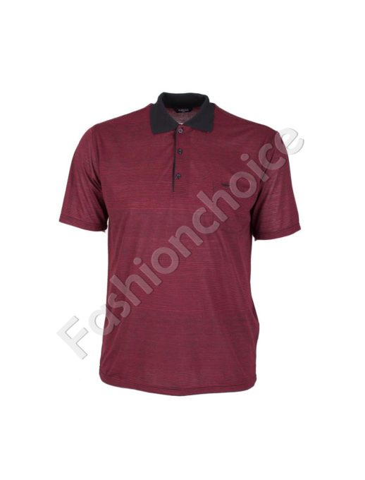 Мъжка макси блуза с якичка и райe- код 736-9055-2